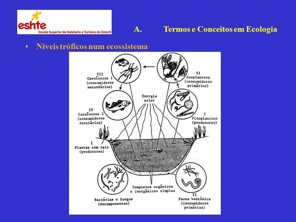 Niveis tróficos num ecossistema A.Termos e Conceitos em Ecologia
