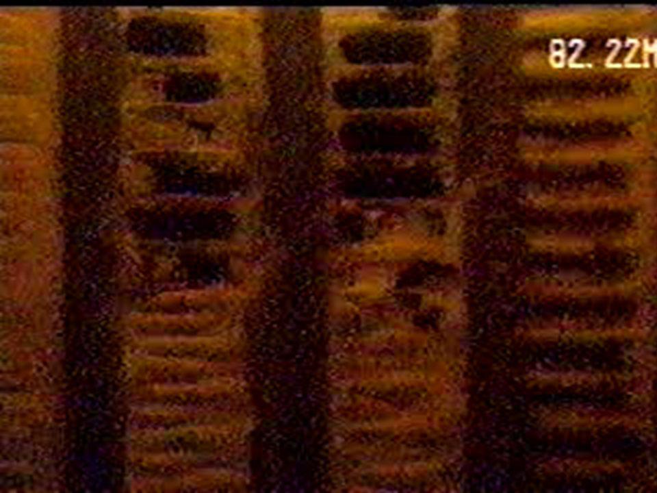Manutenções Trocas de bombas e tubulações Manutenções em poços que ainda não apresentaram problemas significativos, visando remover incrustações e não permitir o avanço dos problemas (preventivo) Reabilitação Processos de desincrustação química para remoção de incrustações mais profundas, reabilitação de vazão e qualidade (corretivo) Intervenções em poços rompidos