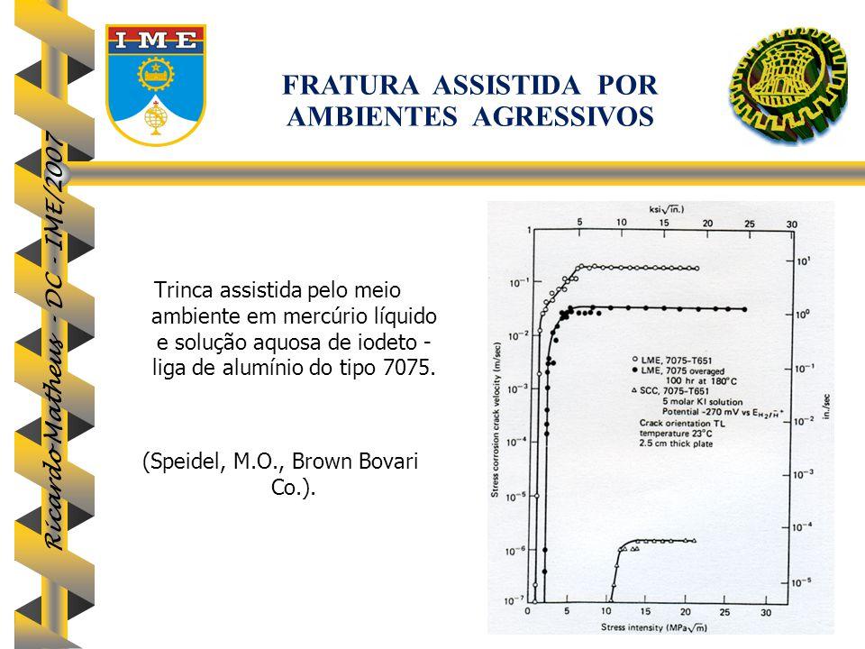 Ricardo Matheus - DC - IME/2007 103 Trinca assistida pelo meio ambiente em mercúrio líquido e solução aquosa de iodeto - liga de alumínio do tipo 7075