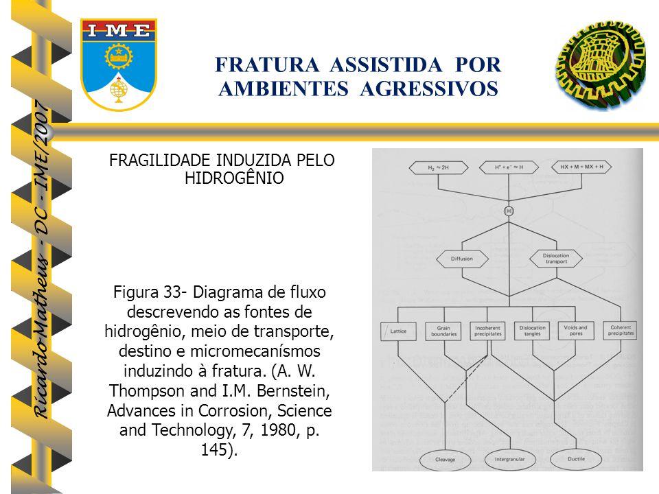 Ricardo Matheus - DC - IME/2007 Figura 33- Diagrama de fluxo descrevendo as fontes de hidrogênio, meio de transporte, destino e micromecanísmos induzi