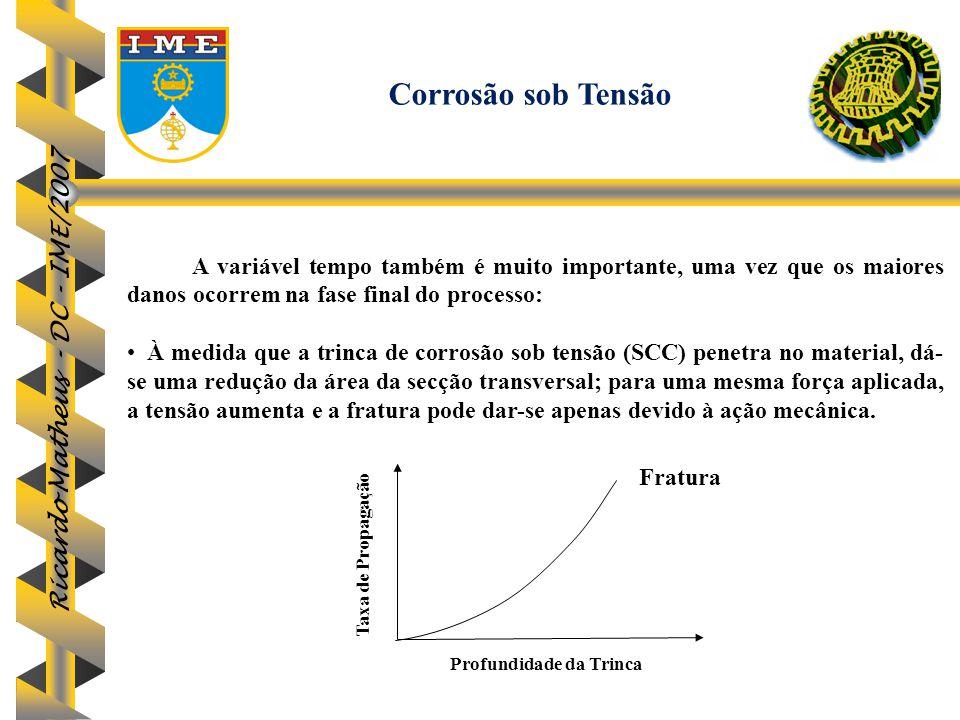 Ricardo Matheus - DC - IME/2007 A variável tempo também é muito importante, uma vez que os maiores danos ocorrem na fase final do processo: À medida q