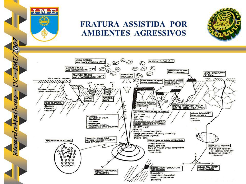 Ricardo Matheus - DC - IME/2007 88 FRATURA ASSISTIDA POR AMBIENTES AGRESSIVOS