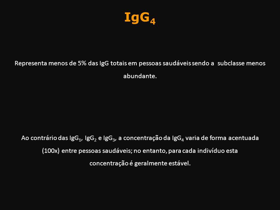 IgG 4 Representa menos de 5% das IgG totais em pessoas saudáveis sendo a subclasse menos abundante. Ao contrário das IgG 1, IgG 2 e IgG 3, a concent