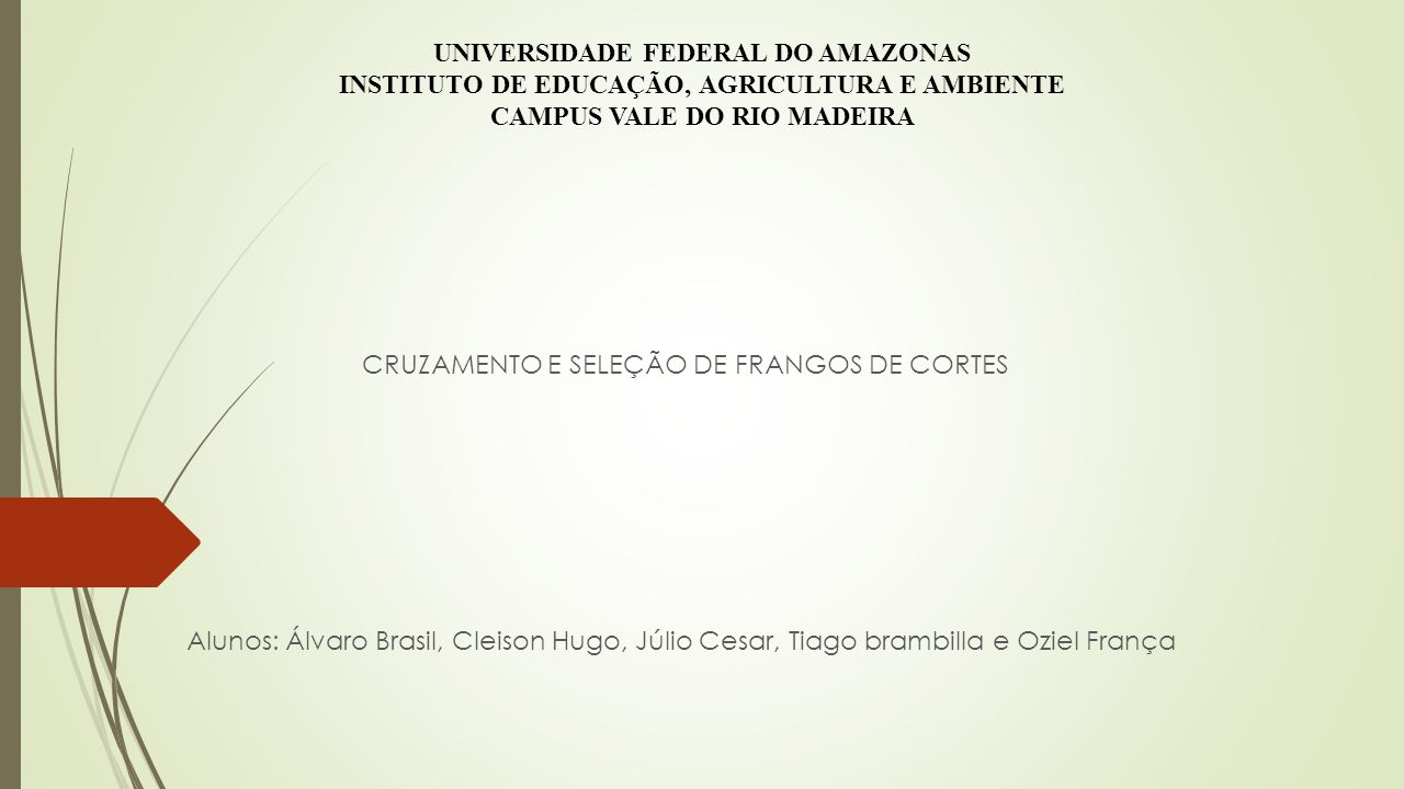 UNIVERSIDADE FEDERAL DO AMAZONAS INSTITUTO DE EDUCAÇÃO, AGRICULTURA E AMBIENTE CAMPUS VALE DO RIO MADEIRA CRUZAMENTO E SELEÇÃO DE FRANGOS DE CORTES Alunos: Álvaro Brasil, Cleison Hugo, Júlio Cesar, Tiago brambilla e Oziel França