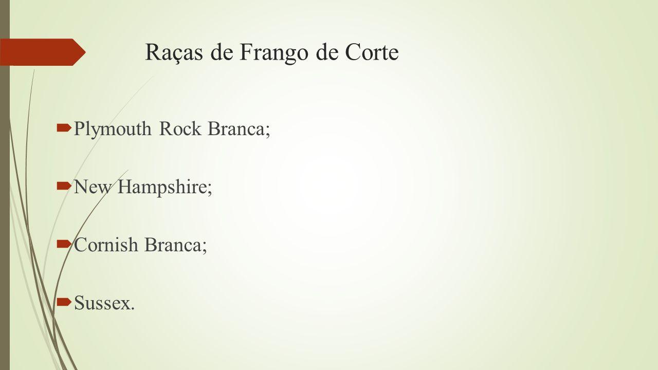 Raças de Frango de Corte  Plymouth Rock Branca;  New Hampshire;  Cornish Branca;  Sussex.
