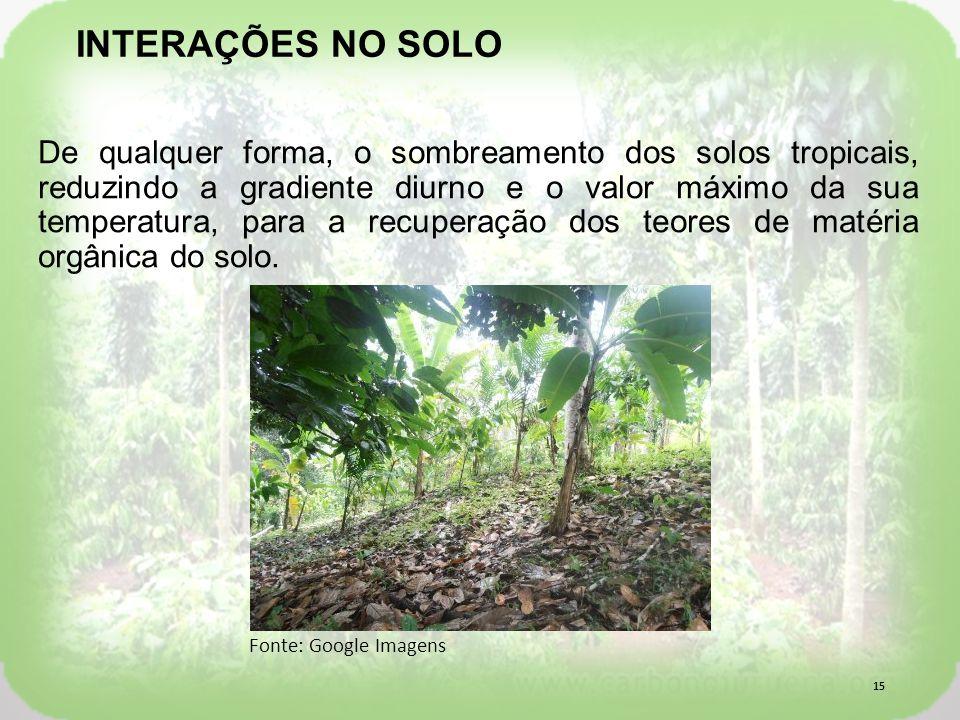 De qualquer forma, o sombreamento dos solos tropicais, reduzindo a gradiente diurno e o valor máximo da sua temperatura, para a recuperação dos teores de matéria orgânica do solo.