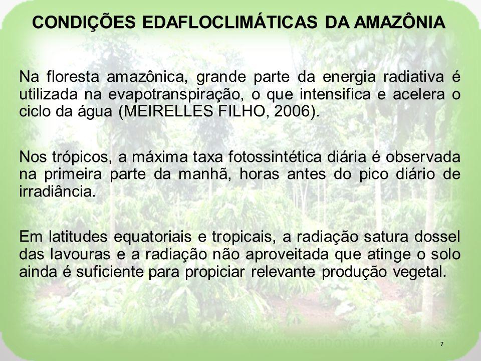 Na floresta amazônica, grande parte da energia radiativa é utilizada na evapotranspiração, o que intensifica e acelera o ciclo da água (MEIRELLES FILHO, 2006).