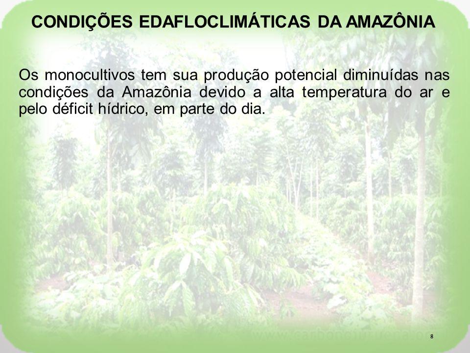 Os monocultivos tem sua produção potencial diminuídas nas condições da Amazônia devido a alta temperatura do ar e pelo déficit hídrico, em parte do dia.