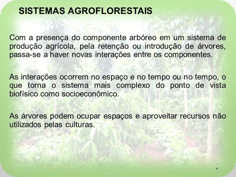 Com a presença do componente arbóreo em um sistema de produção agrícola, pela retenção ou introdução de árvores, passa-se a haver novas interações entre os componentes.