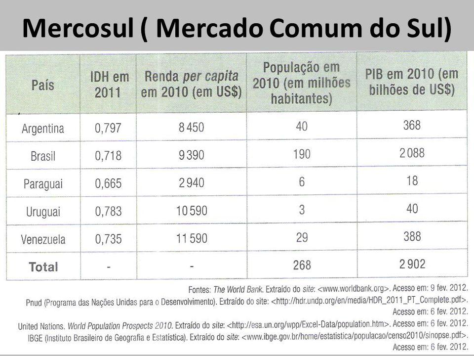 Mercosul ( Mercado Comum do Sul)