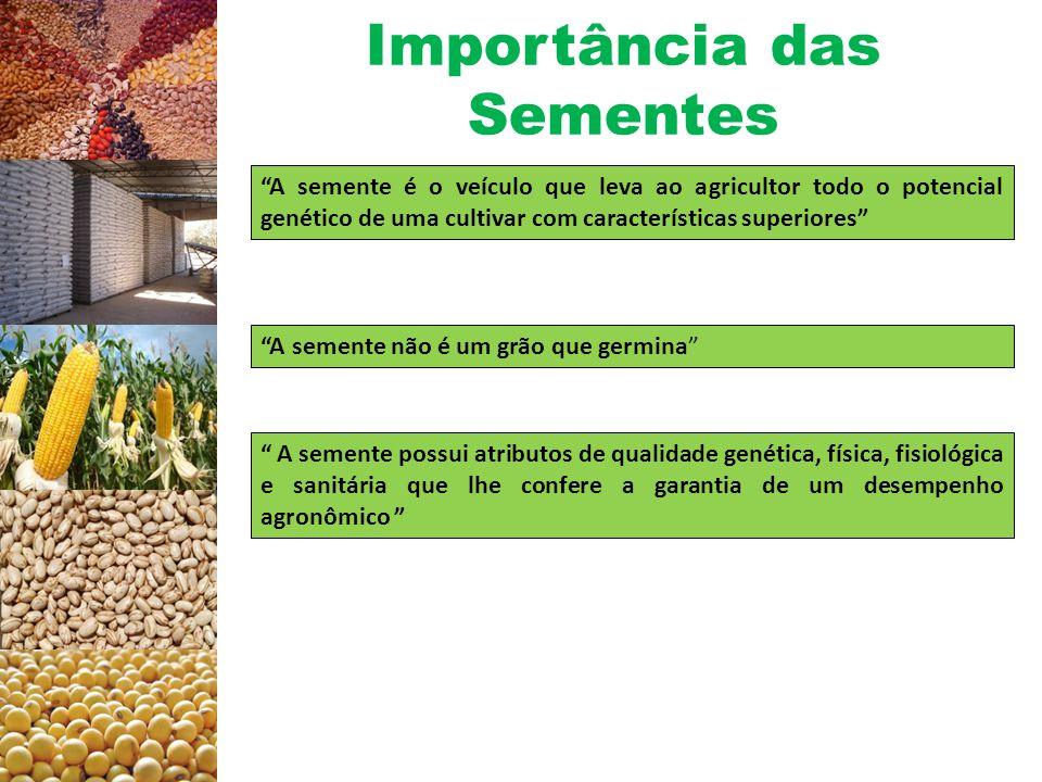 Importância das Sementes Produção agrícola Taxa de utilização de sementes (%) selecionadas de algumas culturas de expressão econômica.