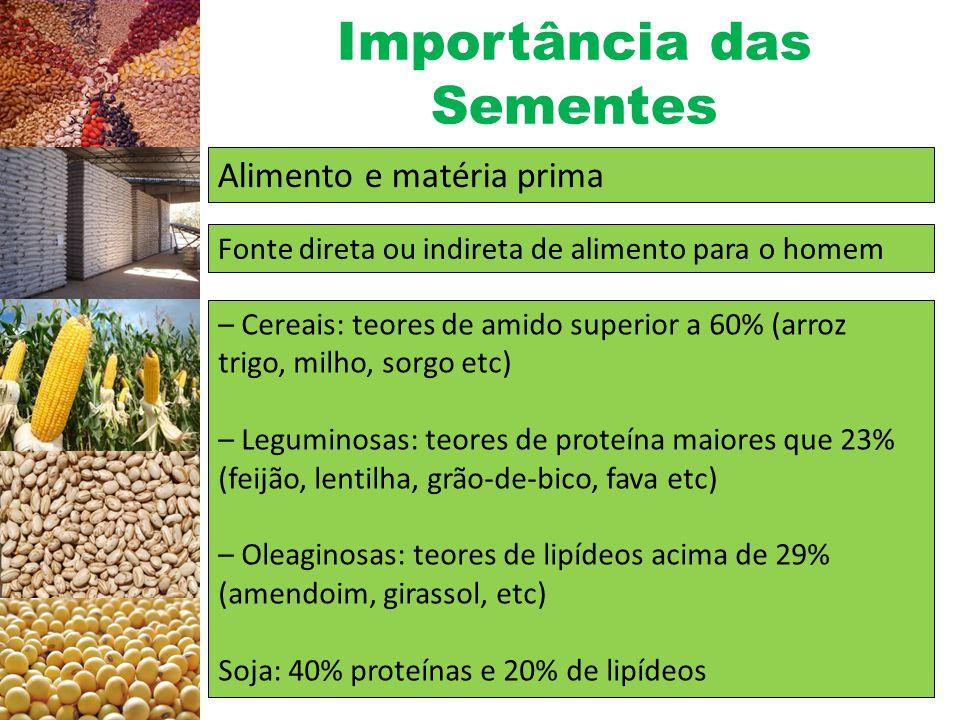 Importância das Sementes Relação entre utilização e produtividade de sementes de soja.