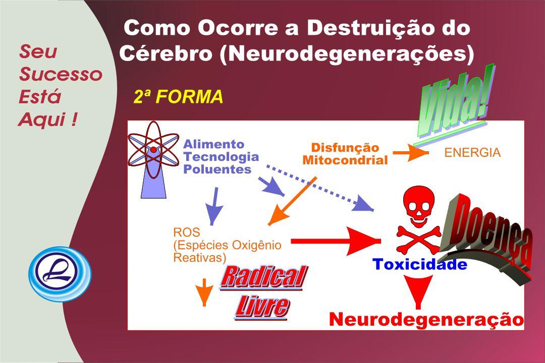 Como Ocorre a Destruição do Cérebro (Neurodegenerações) 2ª FORMA