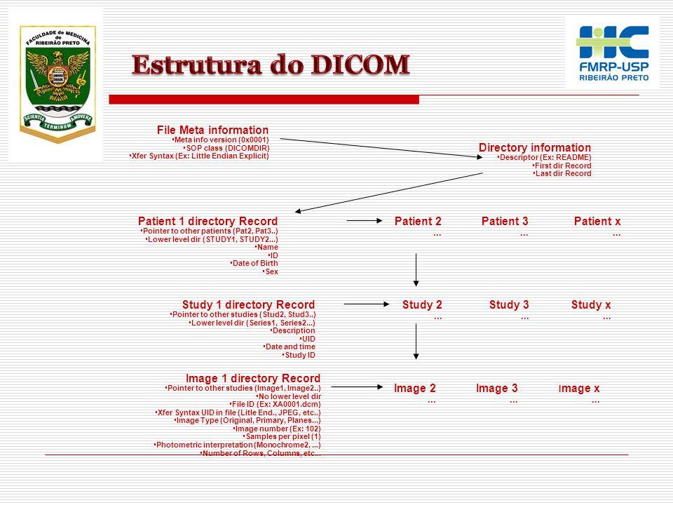File Meta information Meta info version (0x0001) SOP class (DICOMDIR) Xfer Syntax (Ex: Little Endian Explicit) Directory information Descriptor (Ex: R