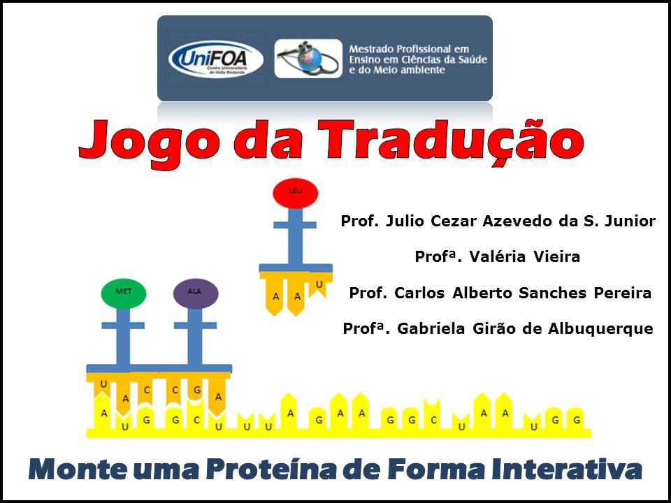 Prof. Julio Cezar Azevedo da S. Junior Profª. Valéria Vieira Prof. Carlos Alberto Sanches Pereira Profª. Gabriela Girão de Albuquerque