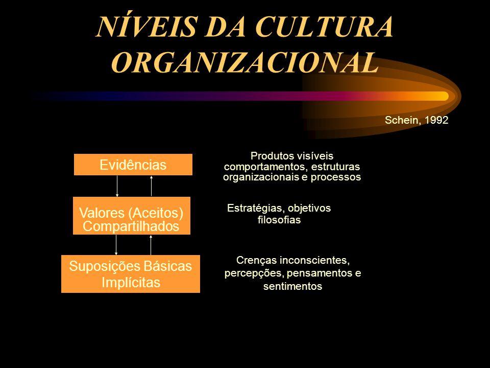 NÍVEIS DA CULTURA ORGANIZACIONAL Schein, 1992 Evidências Produtos visíveis comportamentos, estruturas organizacionais e processos Valores (Aceitos) Co
