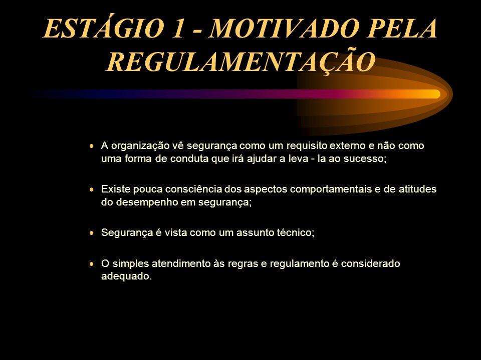 ESTÁGIO 1 - MOTIVADO PELA REGULAMENTAÇÃO  A organização vê segurança como um requisito externo e não como uma forma de conduta que irá ajudar a leva