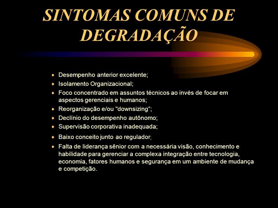 SINTOMAS COMUNS DE DEGRADAÇÃO  Desempenho anterior excelente;  Isolamento Organizacional;  Foco concentrado em assuntos técnicos ao invés de focar