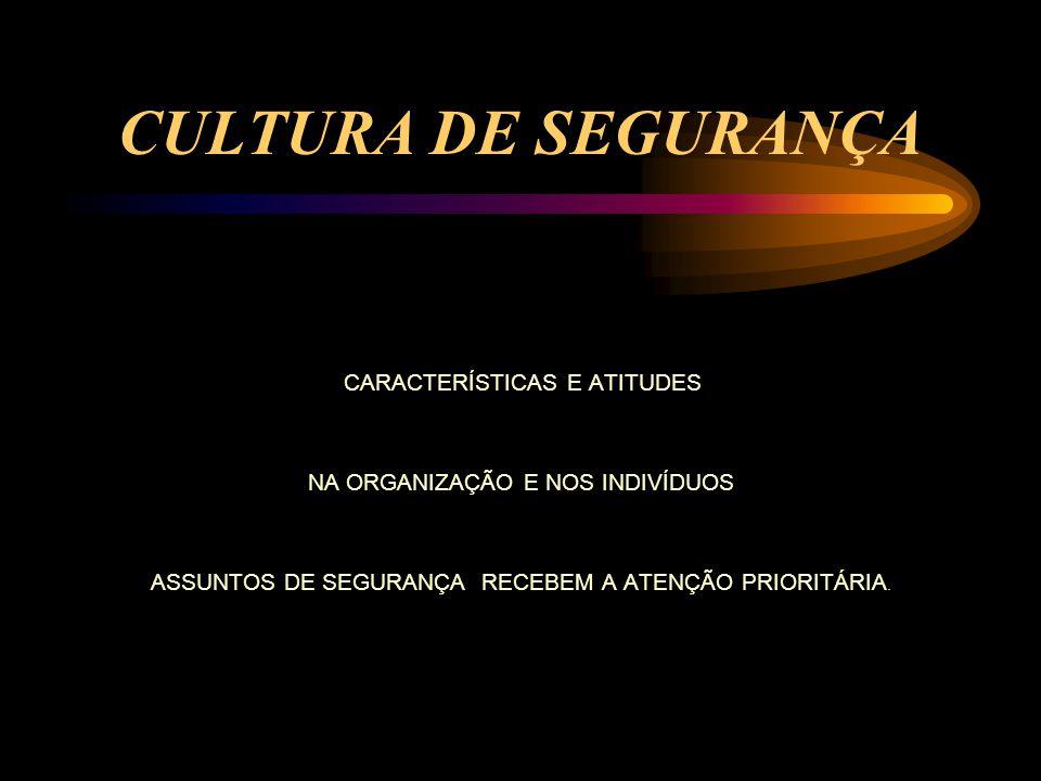 Definições dos requisitos e da organização Planejamento, controle e recursos Implementação Auditoria, revisão e realimentação Deciar.