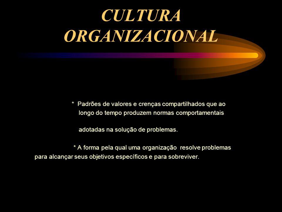 CULTURA ORGANIZACIONAL * Padrões de valores e crenças compartilhados que ao longo do tempo produzem normas comportamentais adotadas na solução de problemas.