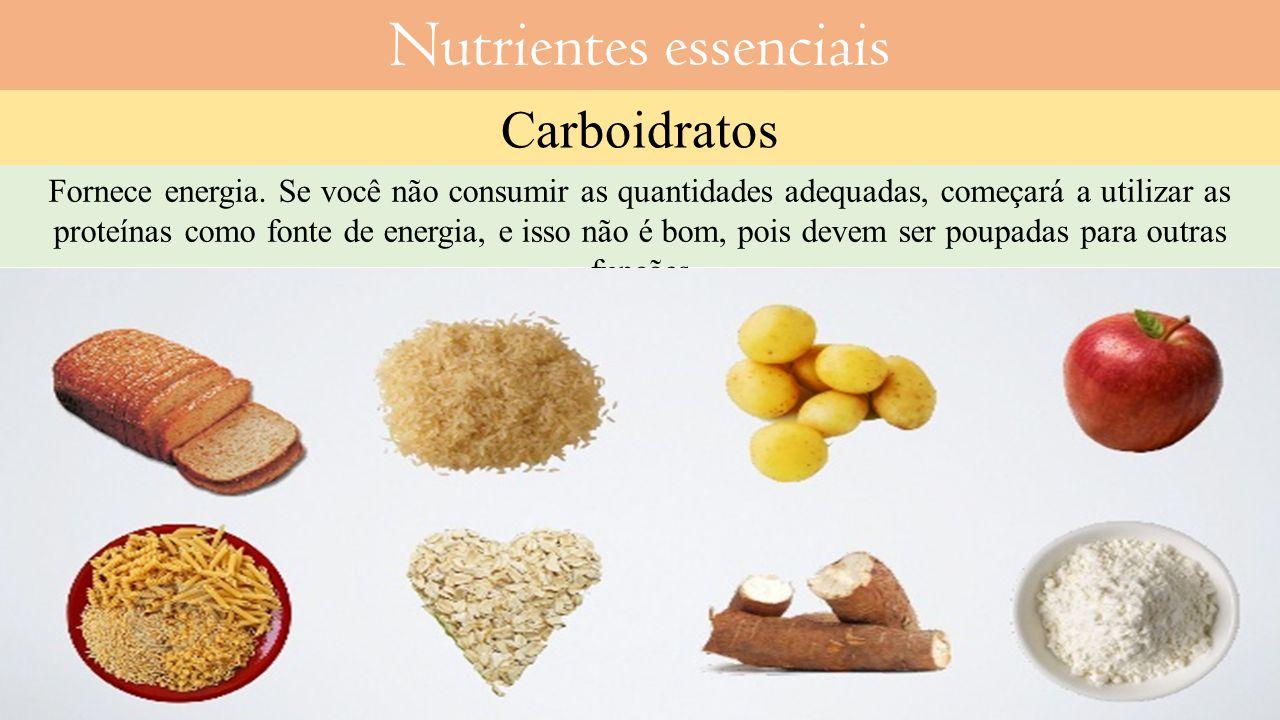 Nutrientes essenciais Carboidratos Fornece energia.