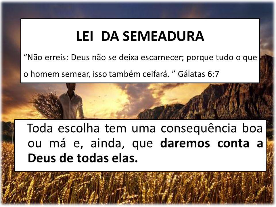 """Toda escolha tem uma consequência boa ou má e, ainda, que daremos conta a Deus de todas elas. LEI DA SEMEADURA """"Não erreis: Deus não se deixa escarnec"""
