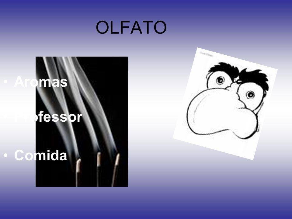 OLFATO Aromas Professor Comida