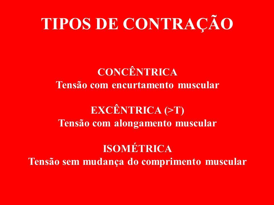TIPOS DE CONTRAÇÃO CONCÊNTRICA Tensão com encurtamento muscular EXCÊNTRICA (>T) Tensão com alongamento muscular ISOMÉTRICA Tensão sem mudança do compr