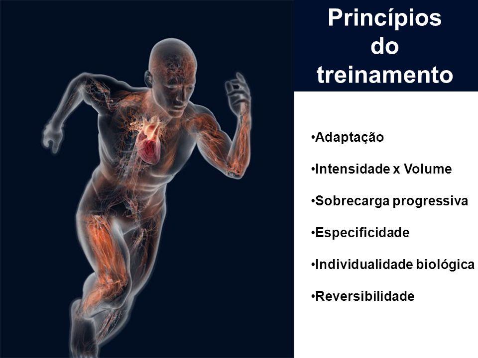 Adaptação Intensidade x Volume Sobrecarga progressiva Especificidade Individualidade biológica Reversibilidade Princípios do treinamento