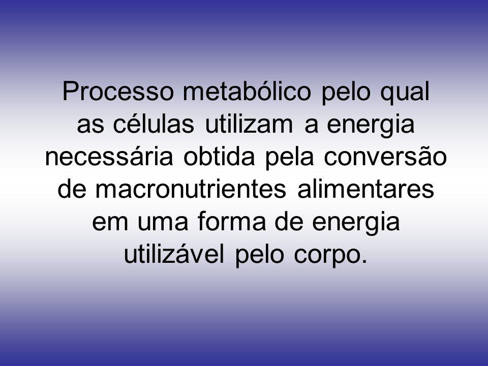 Processo metabólico pelo qual as células utilizam a energia necessária obtida pela conversão de macronutrientes alimentares em uma forma de energia ut