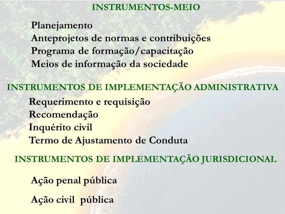INSTRUMENTOS DE IMPLEMENTAÇÃO JURISDICIONAL Ação penal pública Ação civil pública INSTRUMENTOS DE IMPLEMENTAÇÃO ADMINISTRATIVA Requerimento e requisição Recomendação Inquérito civil Termo de Ajustamento de Conduta INSTRUMENTOS-MEIO Planejamento Anteprojetos de normas e contribuições Programa de formação/capacitação Meios de informação da sociedade