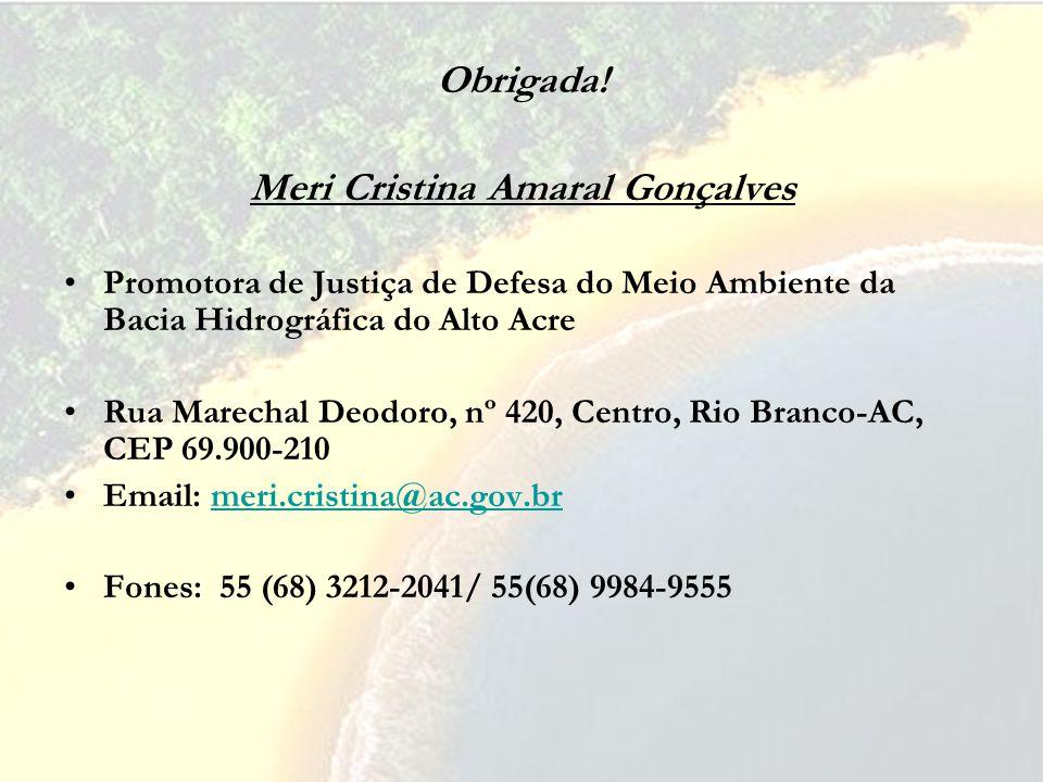 Obrigada! Meri Cristina Amaral Gonçalves Promotora de Justiça de Defesa do Meio Ambiente da Bacia Hidrográfica do Alto Acre Rua Marechal Deodoro, nº 4