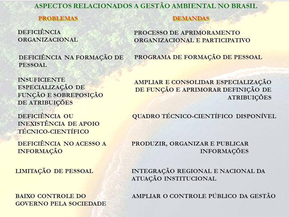 PROBLEMAS DEFICIÊNCIA NA FORMAÇÃO DE PESSOAL INSUFICIENTE ESPECIALIZAÇÃO DE FUNÇÃO E SOBREPOSIÇÃO DE ATRIBUIÇÕES DEFICIÊNCIA OU INEXISTÊNCIA DE APOIO TÉCNICO-CIENTÍFICO DEFICIÊNCIA NO ACESSO A INFORMAÇÃO LIMITAÇÃO DE PESSOAL DEMANDAS INTEGRAÇÃO REGIONAL E NACIONAL DA ATUAÇÃO INSTITUCIONAL PROCESSO DE APRIMORAMENTO ORGANIZACIONAL E PARTICIPATIVO PROGRAMA DE FORMAÇÃO DE PESSOAL AMPLIAR E CONSOLIDAR ESPECIALIZAÇÃO DE FUNÇÃO E APRIMORAR DEFINIÇÃO DE ATRIBUIÇÕES QUADRO TÉCNICO-CIENTÍFICO DISPONÍVEL PRODUZIR, ORGANIZAR E PUBLICAR INFORMAÇÕES ASPECTOS RELACIONADOS A GESTÃO AMBIENTAL NO BRASIL DEFICIÊNCIA ORGANIZACIONAL BAIXO CONTROLE DO GOVERNO PELA SOCIEDADE AMPLIAR O CONTROLE PÚBLICO DA GESTÃO