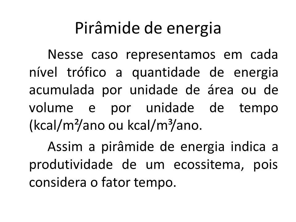 Pirâmide de energia Nesse caso representamos em cada nível trófico a quantidade de energia acumulada por unidade de área ou de volume e por unidade de tempo (kcal/m²/ano ou kcal/m³/ano.