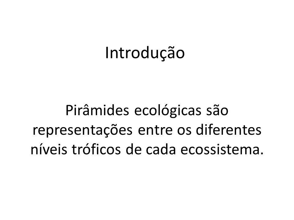 Introdução Pirâmides ecológicas são representações entre os diferentes níveis tróficos de cada ecossistema.