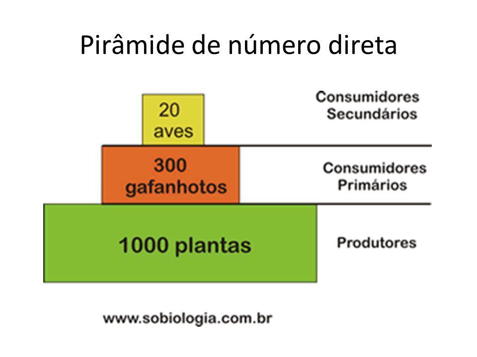Pirâmide de número direta