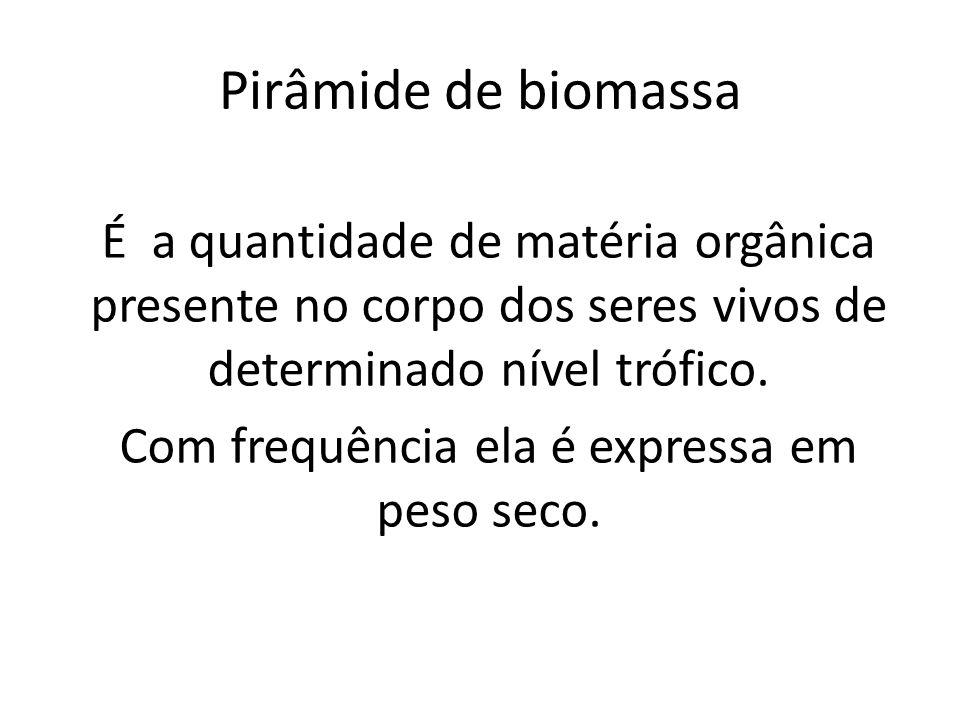 É a quantidade de matéria orgânica presente no corpo dos seres vivos de determinado nível trófico. Com frequência ela é expressa em peso seco. Pirâmid