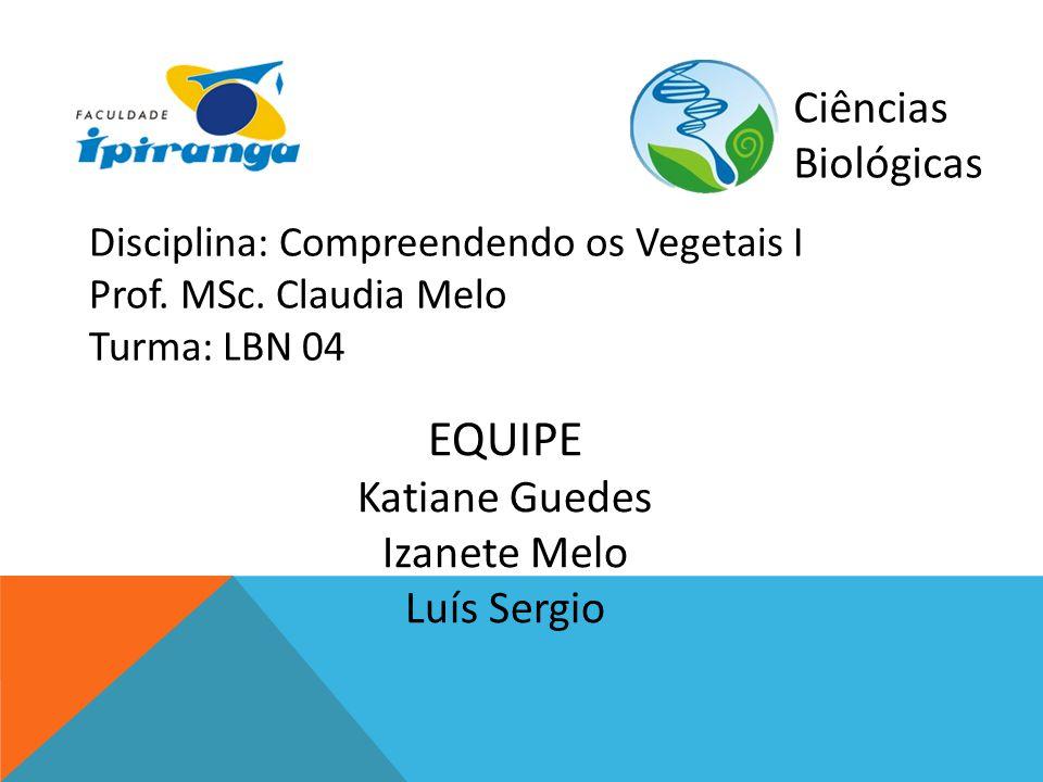 Ciências Biológicas Disciplina: Compreendendo os Vegetais I Prof. MSc. Claudia Melo Turma: LBN 04 EQUIPE Katiane Guedes Izanete Melo Luís Sergio
