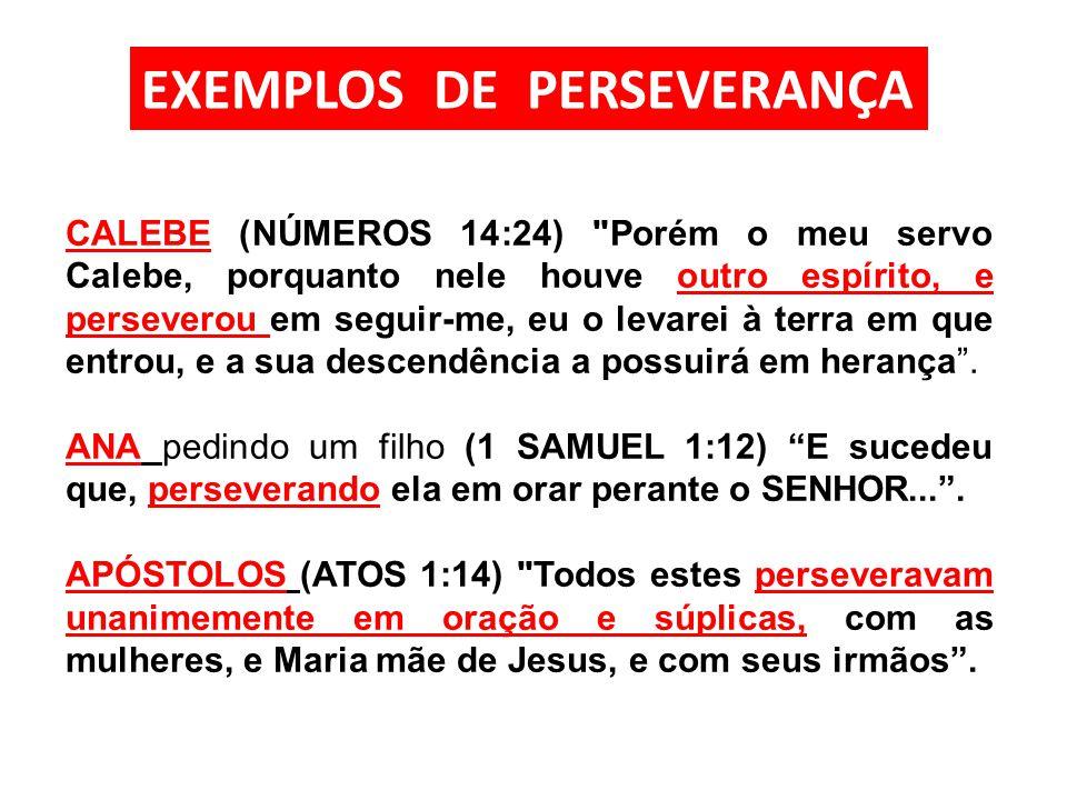 CALEBE (NÚMEROS 14:24)