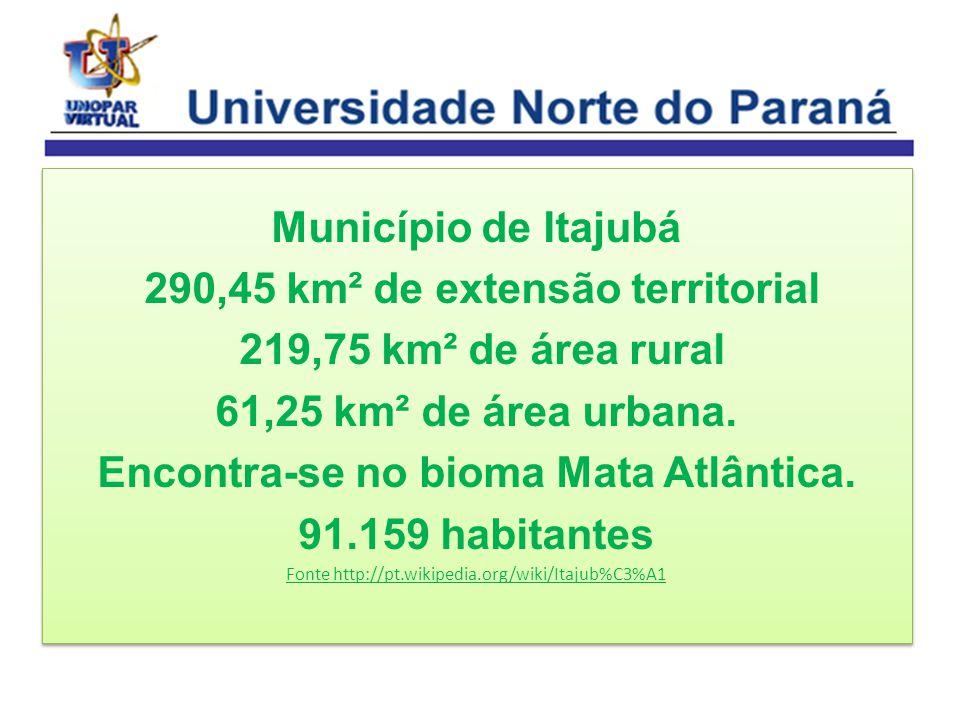Município de Itajubá 290,45 km² de extensão territorial 219,75 km² de área rural 61,25 km² de área urbana. Encontra-se no bioma Mata Atlântica. 91.159