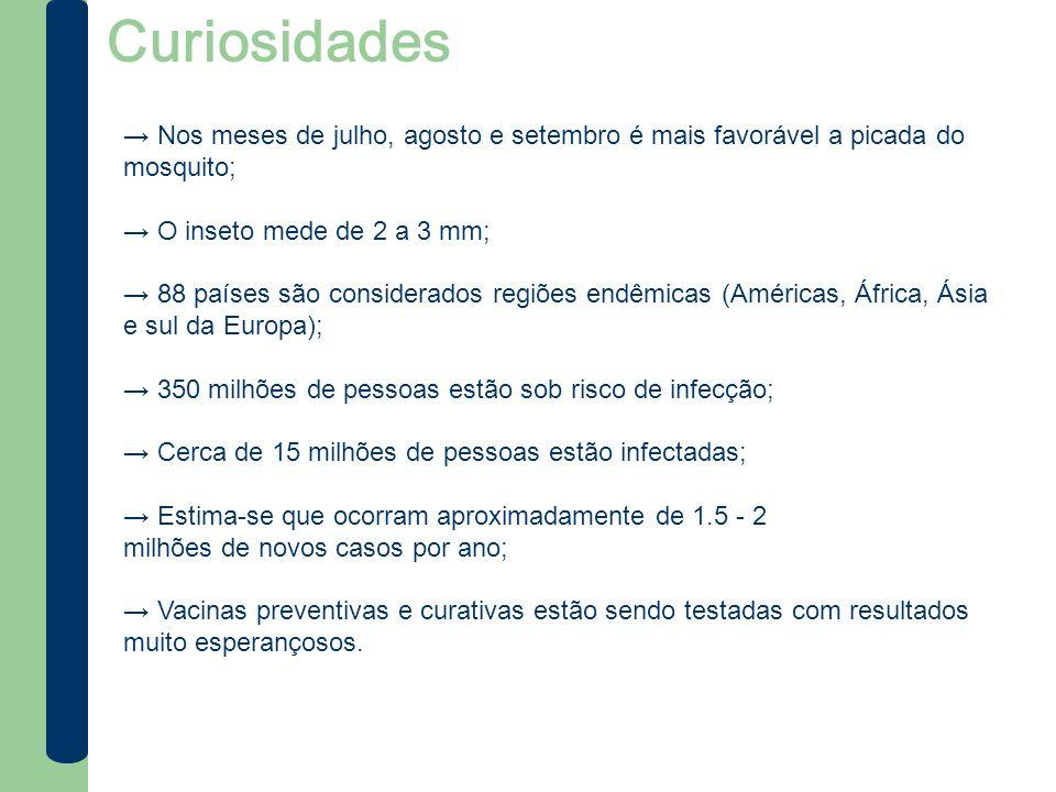 Curiosidades → Nos meses de julho, agosto e setembro é mais favorável a picada do mosquito; → O inseto mede de 2 a 3 mm; → 88 países são considerados