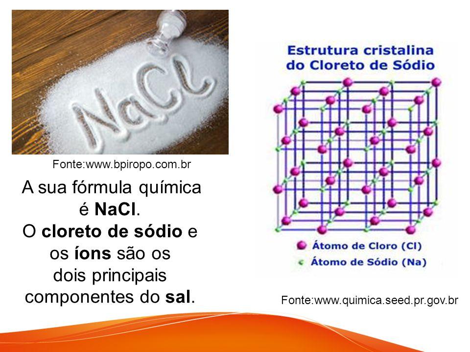 Fonte:www.bpiropo.com.br Fonte:www.quimica.seed.pr.gov.br A sua fórmula química é NaCl. O cloreto de sódio e os íons são os dois principais componente