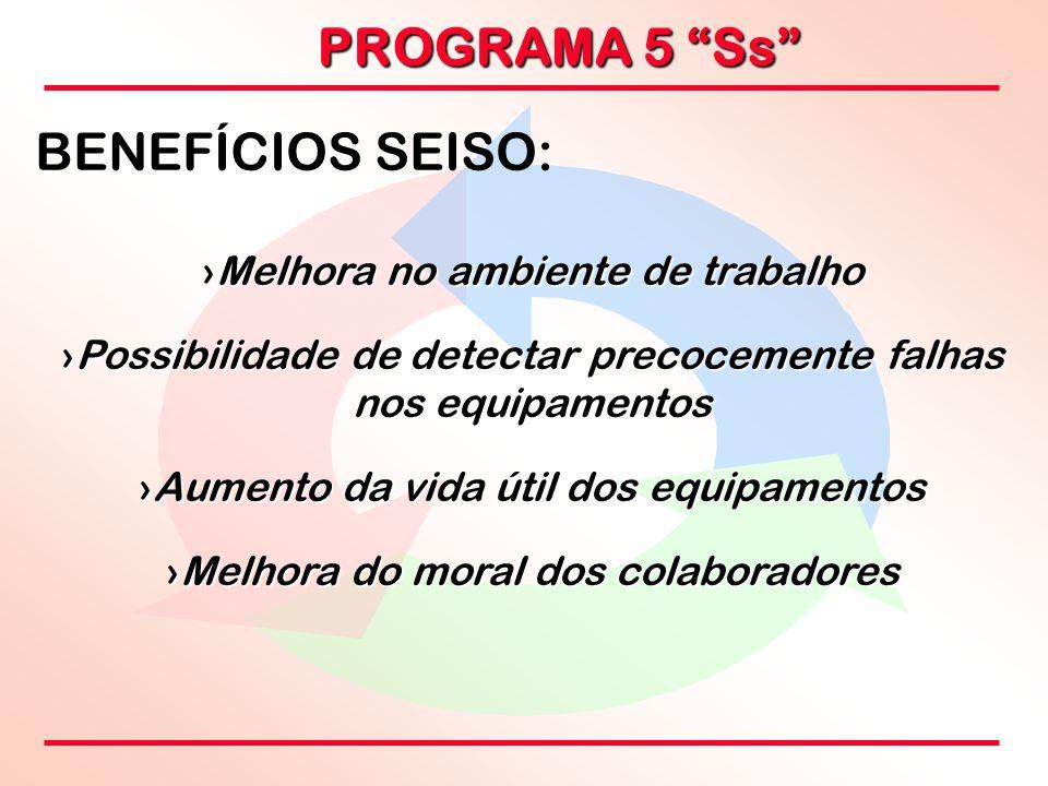 """PROGRAMA 5 """"Ss"""" BENEFÍCIOS SEISO: ›Melhora no ambiente de trabalho ›Possibilidade de detectar precocemente falhas nos equipamentos ›Aumento da vida út"""