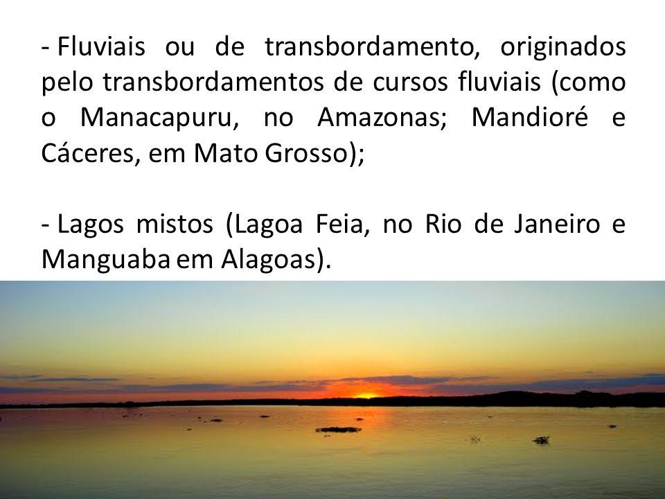 - Fluviais ou de transbordamento, originados pelo transbordamentos de cursos fluviais (como o Manacapuru, no Amazonas; Mandioré e Cáceres, em Mato Grosso); - Lagos mistos (Lagoa Feia, no Rio de Janeiro e Manguaba em Alagoas).