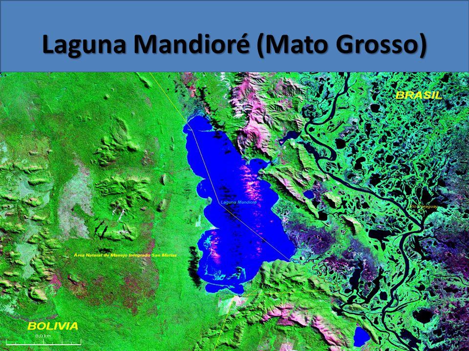 Laguna Mandioré (Mato Grosso)