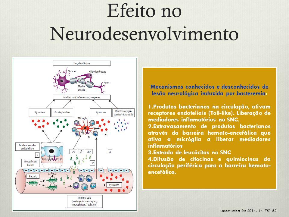 Efeito no Neurodesenvolvimento Lancet infect Dis 2014; 14: 751-62 Mecanismos conhecidos e desconhecidos de lesão neurológica induzida por bacteremia: 1.Produtos bacterianos na circulação, ativam receptores endoteliais (Toll-like).