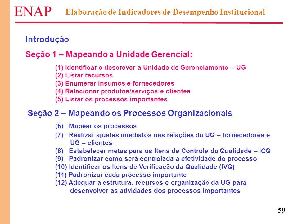 59 Elaboração de Indicadores de Desempenho Institucional Introdução Seção 1 – Mapeando a Unidade Gerencial: (1) Identificar e descrever a Unidade de G