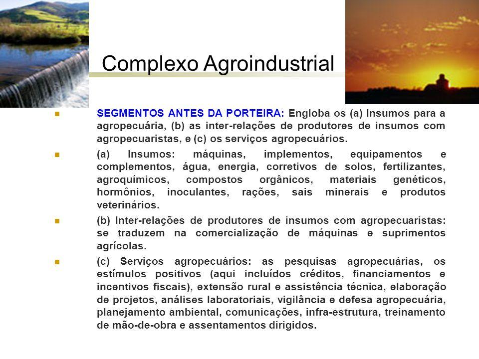 Complexo Agroindustrial SEGMENTOS ANTES DA PORTEIRA: Engloba os (a) Insumos para a agropecuária, (b) as inter-relações de produtores de insumos com ag