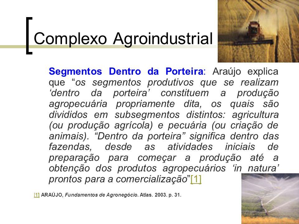 """Complexo Agroindustrial Segmentos Dentro da Porteira: Araújo explica que """"os segmentos produtivos que se realizam 'dentro da porteira' constituem a pr"""