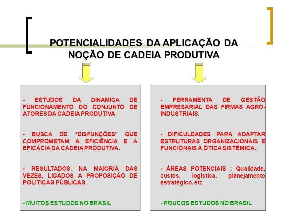 POTENCIALIDADES DA APLICAÇÃO DA NOÇÃO DE CADEIA PRODUTIVA - ESTUDOS DA DINÂMICA DE FUNCIONAMENTO DO CONJUNTO DE ATORES DA CADEIA PRODUTIVA - BUSCA DE